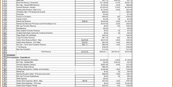 treasurer u0026 39 s report excel spreadsheet with regard to pta
