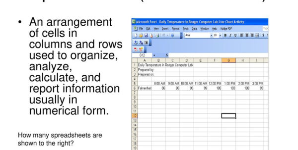 Understanding Spreadsheets Within Understanding Spreadsheets Used In Business  Ppt Download