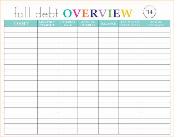 Vulnerability Tracking Spreadsheet For Debt Management Spreadsheet And Lovely Vulnerability Tracking