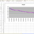 Weight Loss Excel Spreadsheet Regarding The Diet Spreadsheet By Jeremy Zawodny
