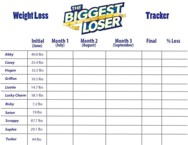 Weight Loss Tracking Spreadsheet Template Download Intended For Office Weight Loss Challenge Template  Austinroofing
