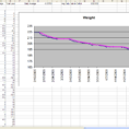 Weight Tracking Spreadsheet With Regard To The Diet Spreadsheet By Jeremy Zawodny