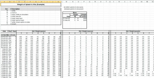 Weight Watchers Points Spreadsheet Inside Weight Tracking Template  Sasolo.annafora.co