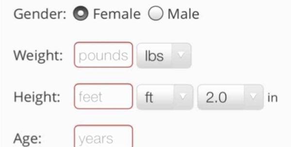 Weight Watchers Points Spreadsheet 1 Printable Spreadshee ...