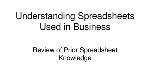 What Is A Spreadsheet Used For Throughout Understanding Spreadsheets Used In Business  Ppt Download