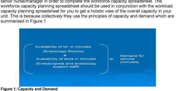 Workload Forecasting Spreadsheet Regarding Workforce Capacity Planning Spreadsheet User Guidance  Pdf