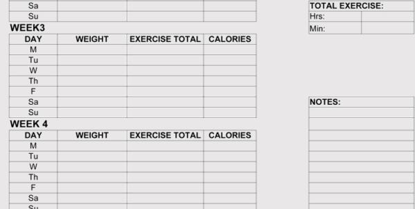 Workout Spreadsheet In 12  Blank Workout Log Sheet Templates To Track Your Progress Workout Spreadsheet Printable Spreadsheet