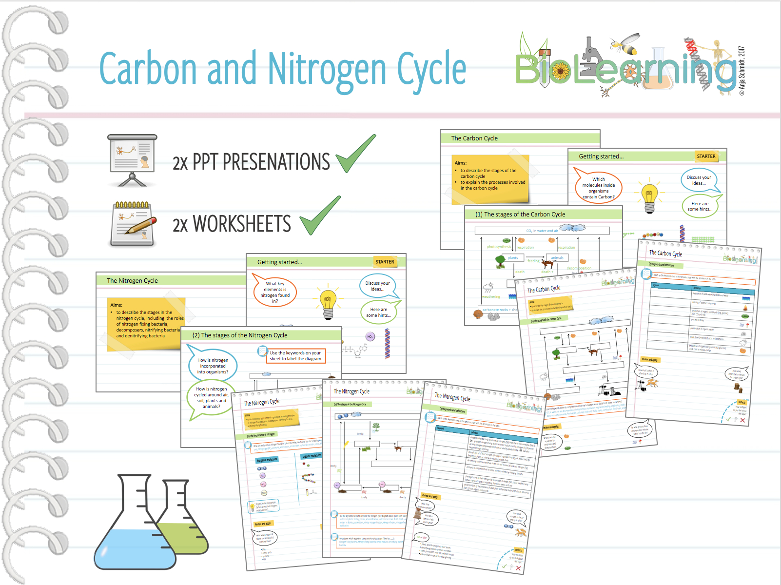 4X Carbon And Nitrogen Cycle  2X Powerpoint Ppts And 2X Worksheets  Ks3Ks4