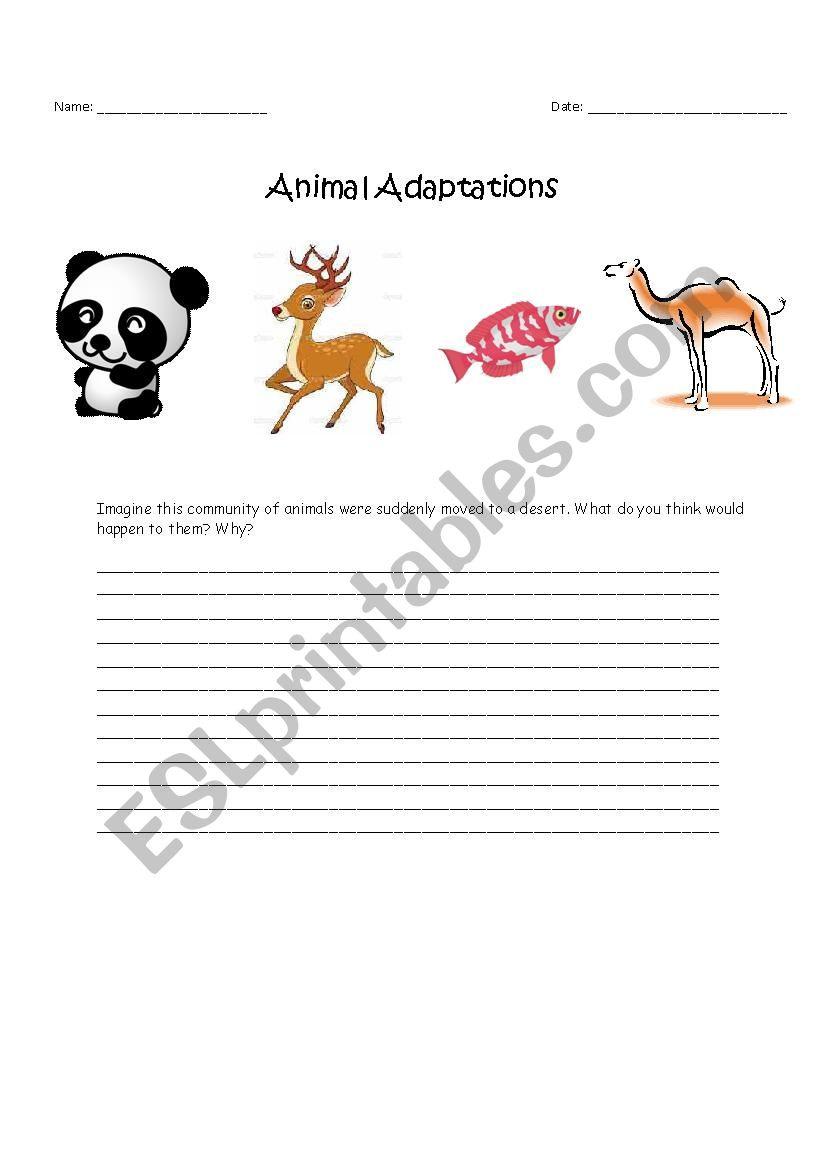 Animal Adaptations  Esl Worksheetemanorabi