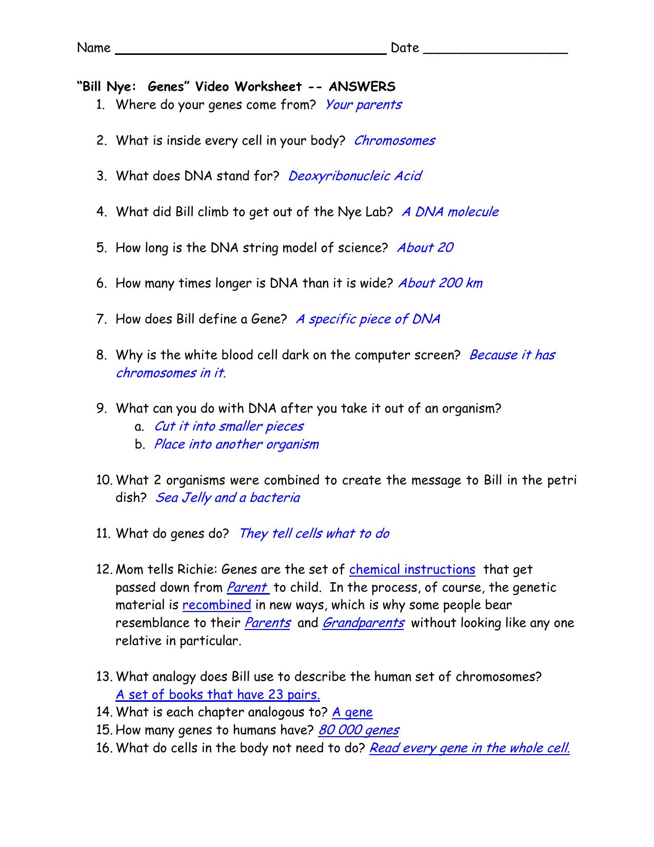 """Bill Nye Genes"""" Video Worksheet"""