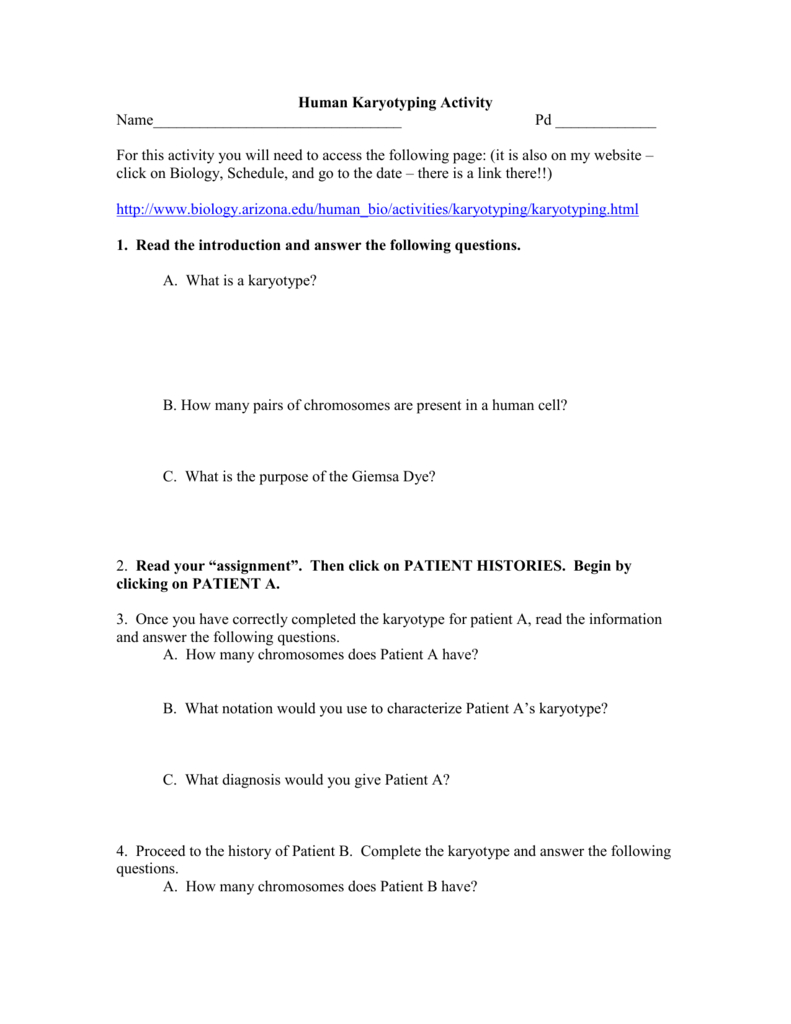 Biology Karyotype Worksheet Answers Key — db-excel.com