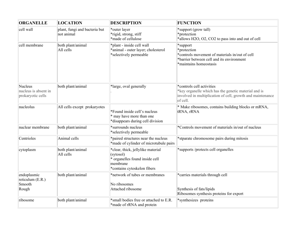 Cell Organelle Matching Game Printable — db-excel.com