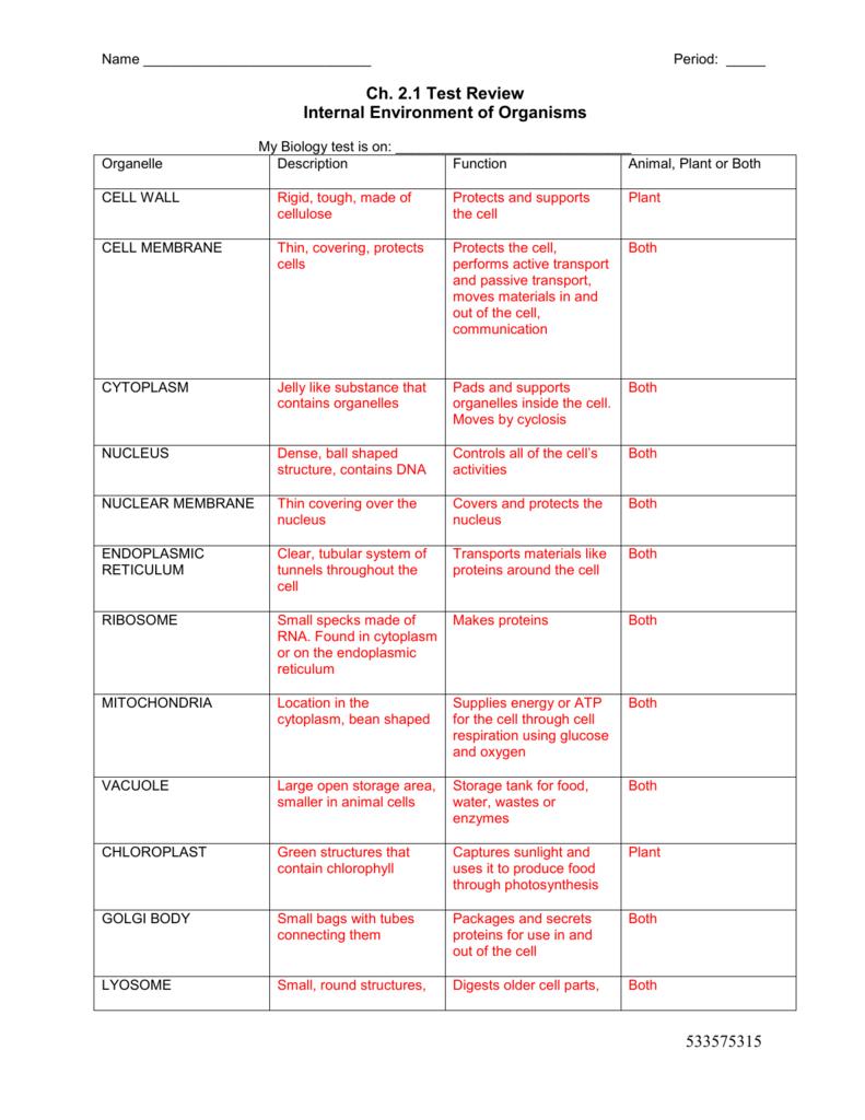 Cell Organelles Worksheet — db excel.com