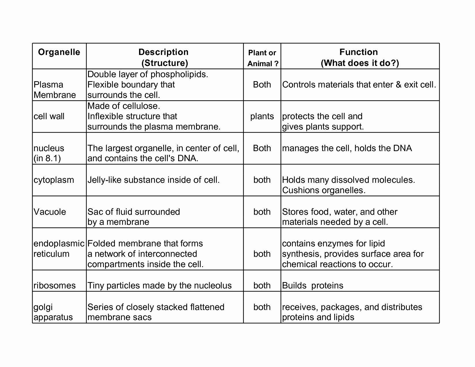 Cell Organelles Worksheet Answer Key — db excel.com