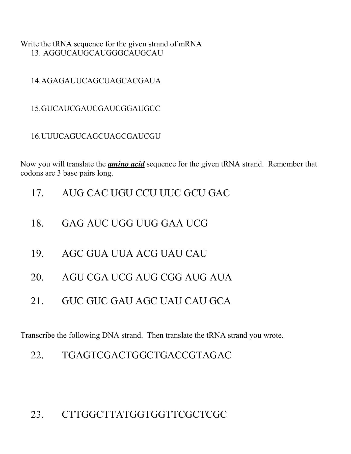 Dna Base Pairing Worksheet Answer Sheet — db excel.com