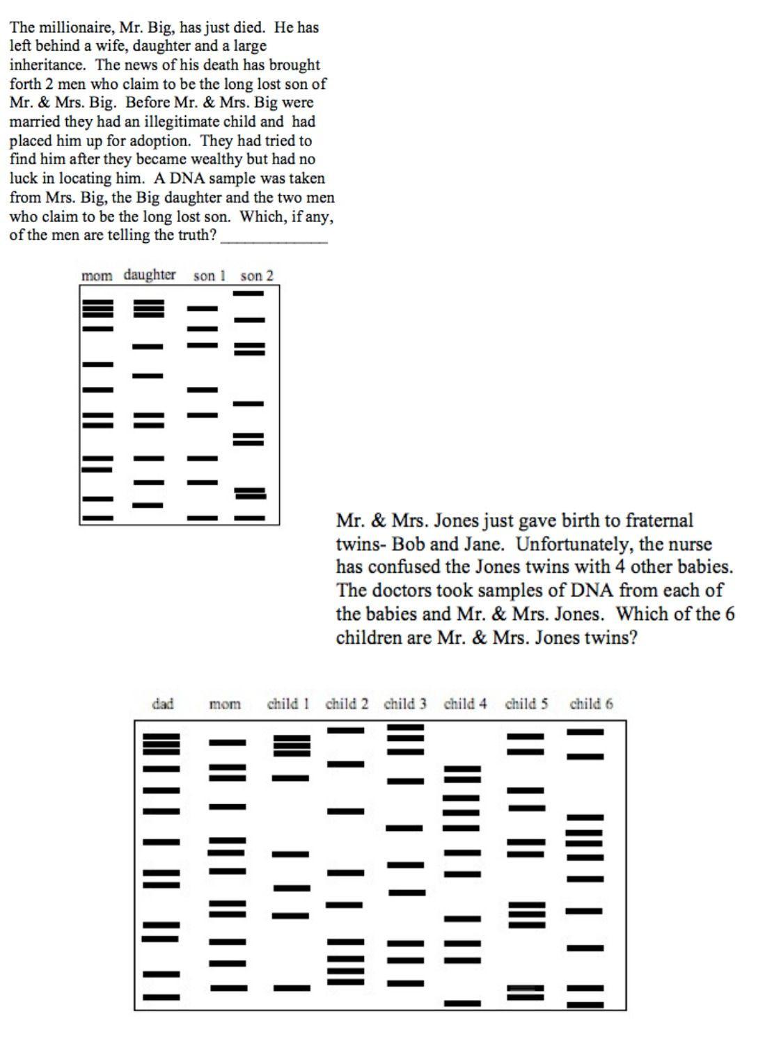 Dna Fingerprinting Worksheet Answer Key   db-excel.com