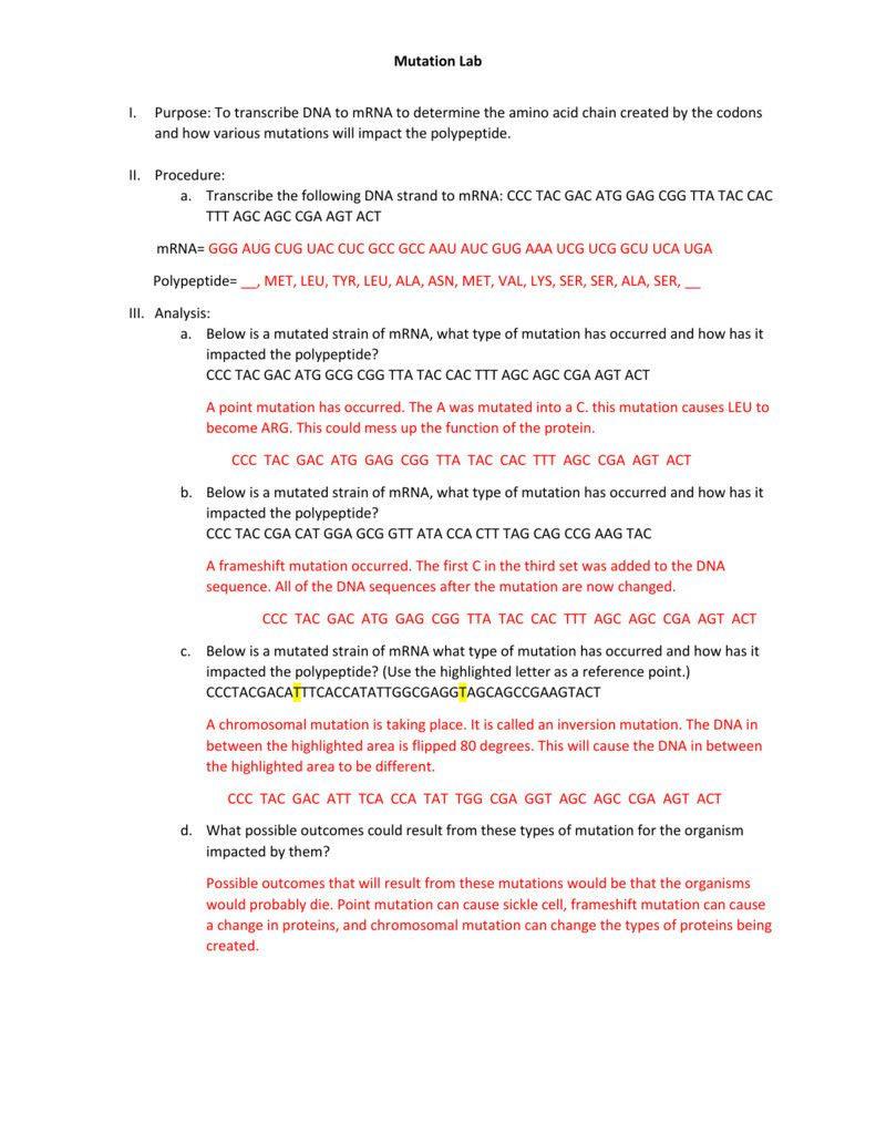 Mutations Worksheet Answers — db excel.com
