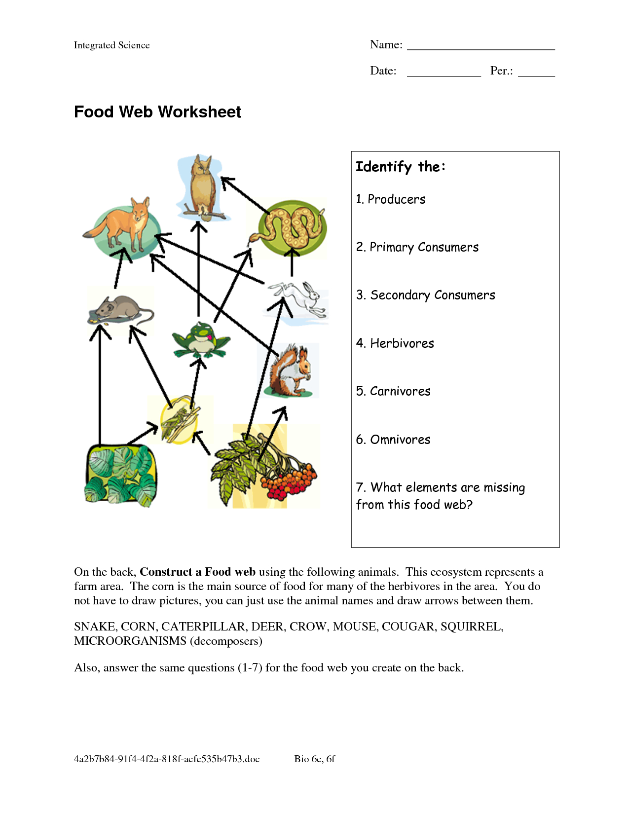 Food Chain Worksheet Answers — db excel.com