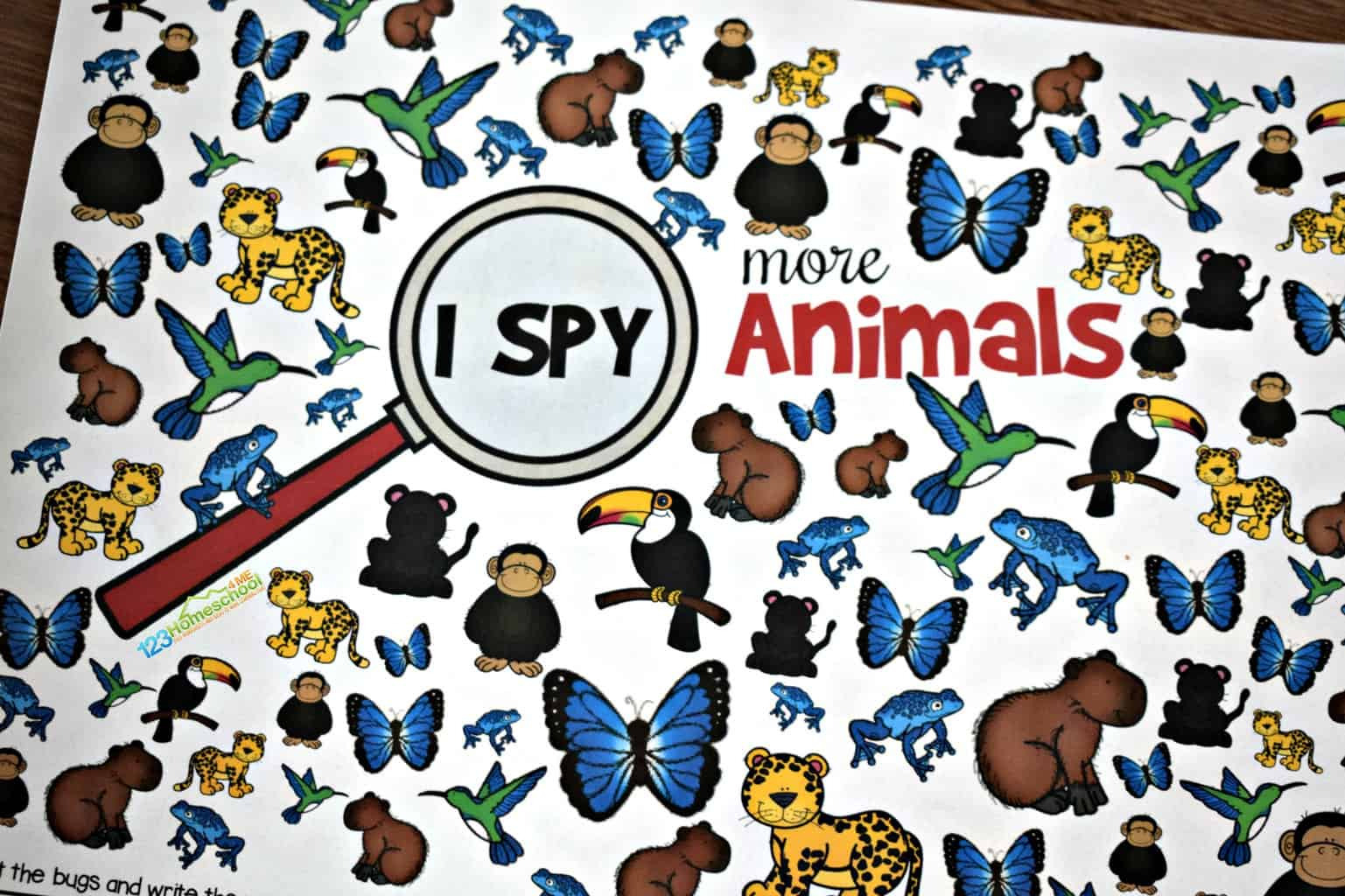 Free Animal I Spy  123 Homeschool 4 Me