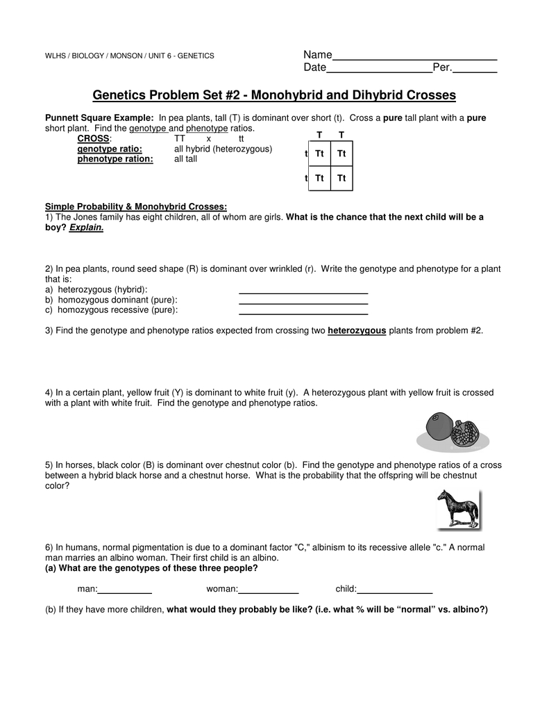 Genetics Problem Set 2 Monohybrid And Dihybrid Crosses ...