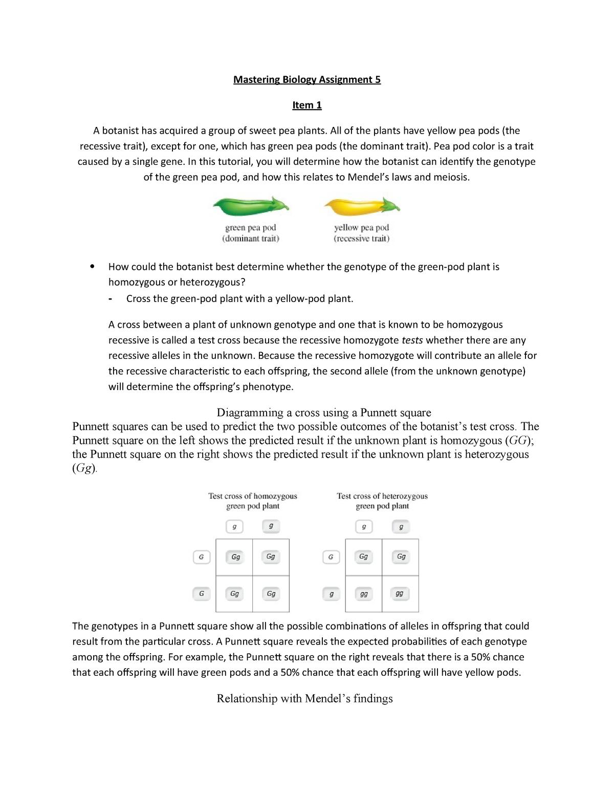 Biology Section 11 4 Meiosis Worksheet Answer Key | db ...