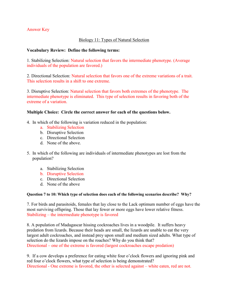 Evolution By Natural Selection Worksheet Answer Key   db ...