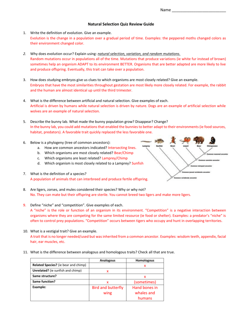 Natural Selection Quiz Review Guide Answer Key 2