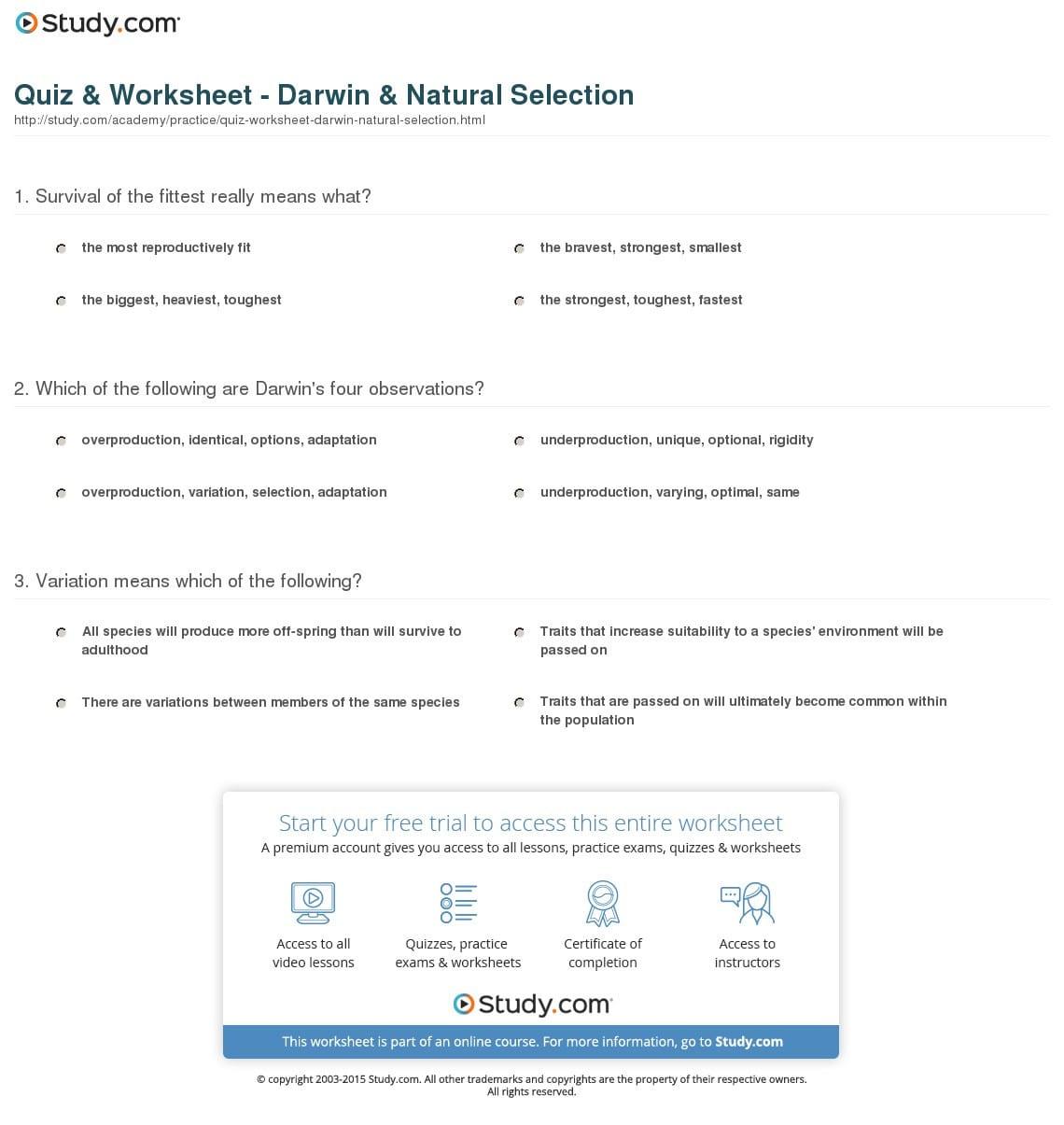 Darwins Natural Selection Worksheet — db excel.com