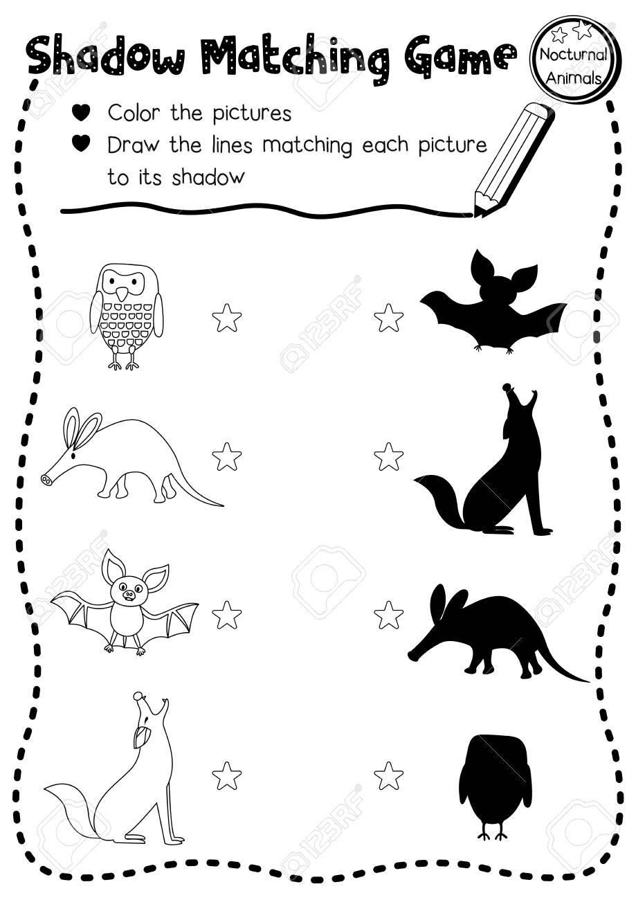 Shadow Matching Game Of Nocturnal Animals For Preschool Kids