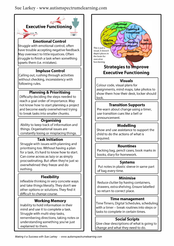 Executive Function Worksheets For Adults — db excel.com