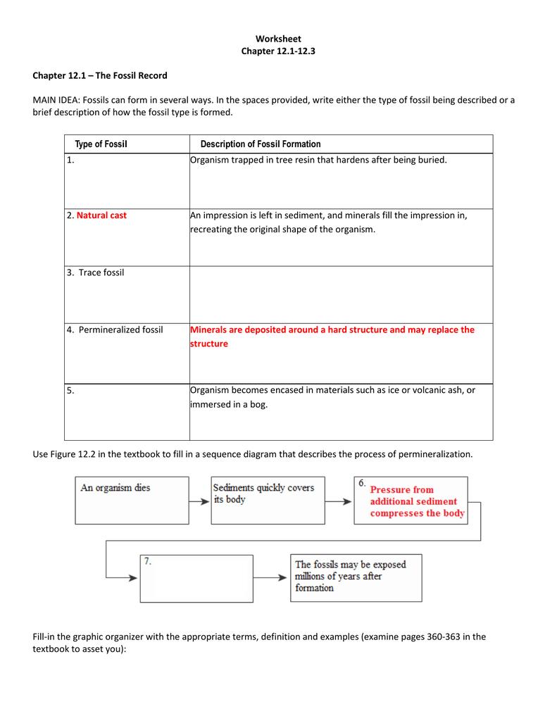 Relative Dating Worksheet Pdf — db-excel.com