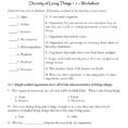 Worksheet  Mr Science