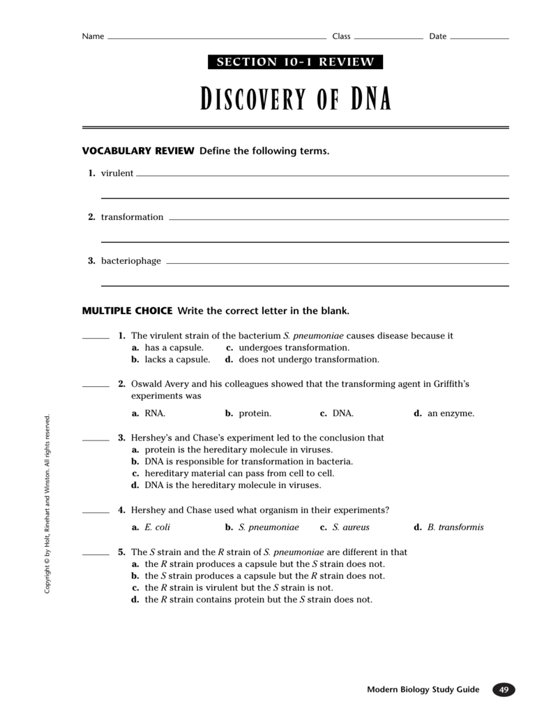 Worksheet Protein Synthesis Worksheet Answers Dna Rna And ...