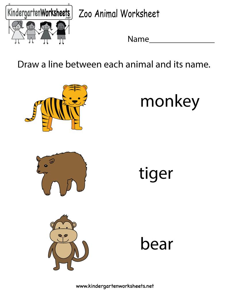 Zoo Animal Worksheet  Free Kindergarten Learning Worksheet